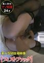 481SACZ-019 愛莉 3